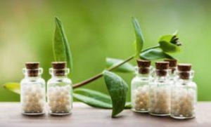 Homeopathy Dr Brenda Harmony Health Healing Inc